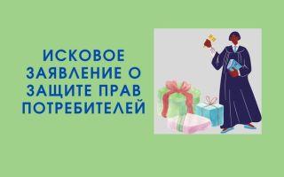 Исковое заявление о защите прав потребителей: образец и требования к оформлению