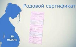 Для чего нужен родовой сертификат и как его получить?
