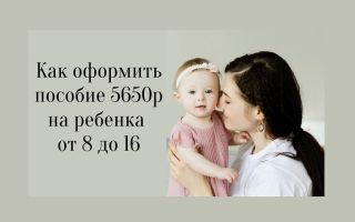 Как оформить пособие 5650р на ребенка от 8 до 16 лет?
