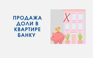 Как продать долю в квартире банку? | Инструкция от эксперта